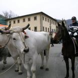 Fairs and folkloristic festivals Italy March