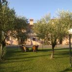 Accommodation Centre Firenze   Holiday Rental Centre Firenze  Holiday Farm Centre Firenze