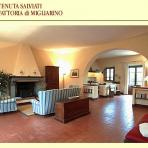 Holiday Farm  Italy Accommodation   Italy Holiday Rental  Italy