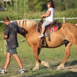 Horse riding Veneto