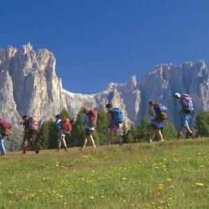 Diversi itinerari per percorrere il Trentino