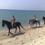 Horse riding Calabria
