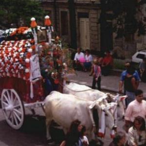 Festa di San Pardo a Larino