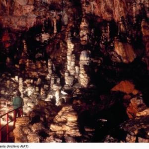 Grotta Gigante del Friuli Sgonico Trieste