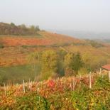 Natural reserves Piedmont