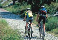 Escursioni in bicicletta in Trentino