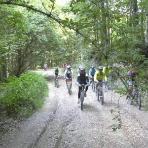 Escursioni in bicicletta a Grosseto
