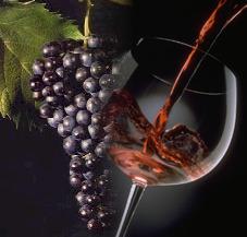 Sagra delle castagne e del vino dolce novello Talla