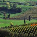 Vins Italie