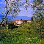 Holiday farm Tuscany  Accommodation  Tuscany   Holiday rental  Tuscany